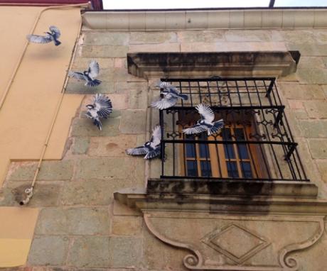 Lapiztola Collective's birds seem escape onto the street