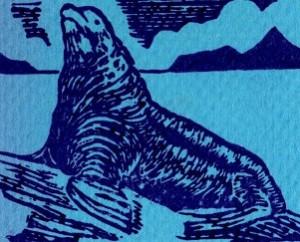 Letterpress print of Stellar Sea Lion © T Edward Bak