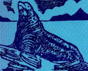 Letterpress print of Stellar Sea Lion © T Edward Bak