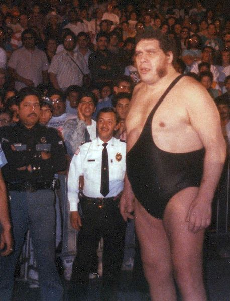 Andre the Giant in late 1980's from Wikipedia