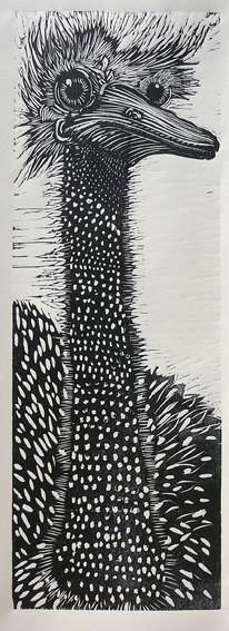 Ostrich, woodblock print, 11 by 34 inches, 2010,KMc
