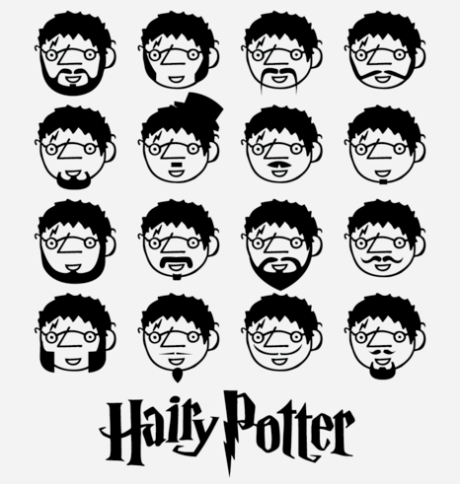 hairypotter500