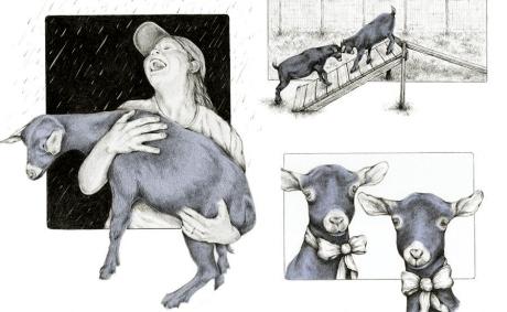 Haley's goats © 2011 Cheryl Sheeler.