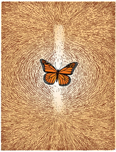 Monarch butterfly, one of the wondrous wordless pages from Ruins © Peter Kuper