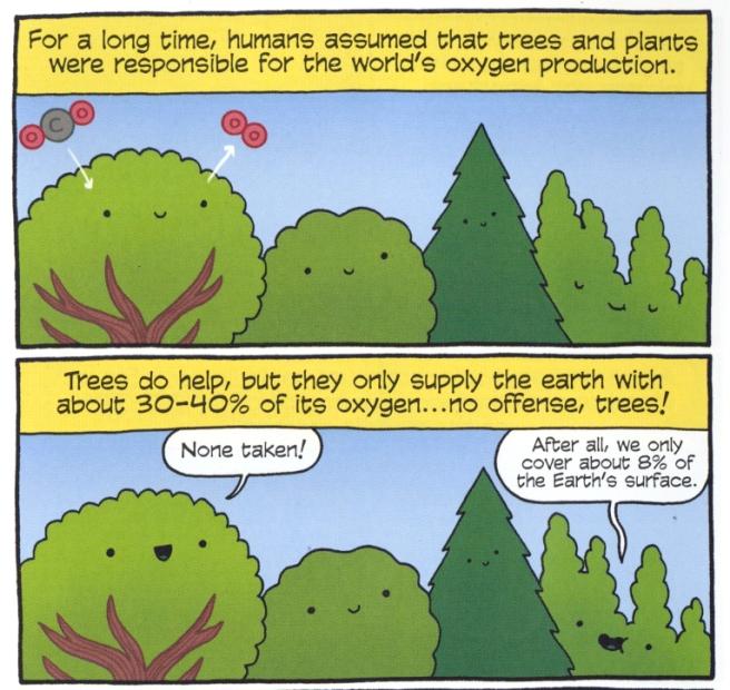 coralreeftrees.jpg