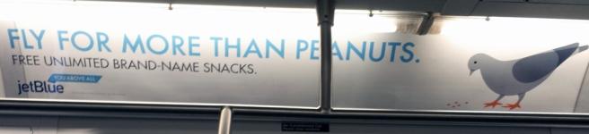 peanutspigeon